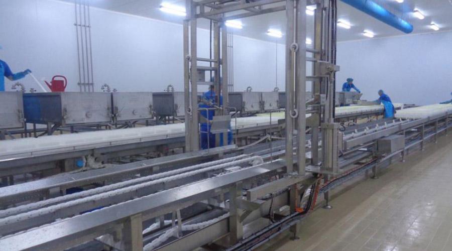FETA PRODUCTION LINE