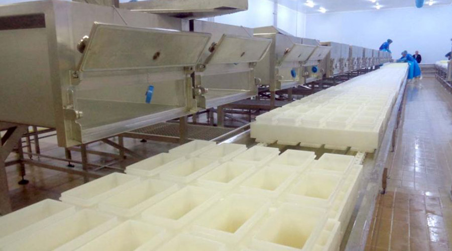 PRODUCTION LINE FETA CHEESE WITH TANKS