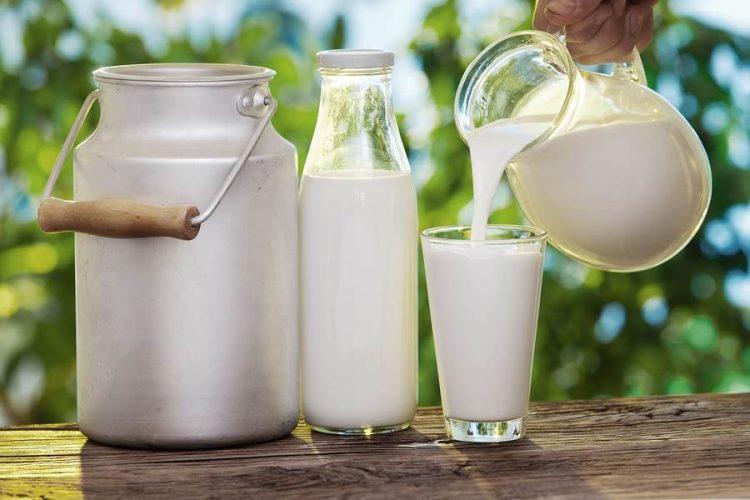 milk pasteurization-dairy machinery